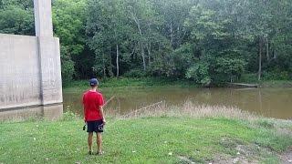 Flyfishing The Grand River, Ohio