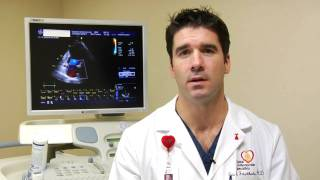 Heart Health : What Is the Normal Range for Cholesterol?