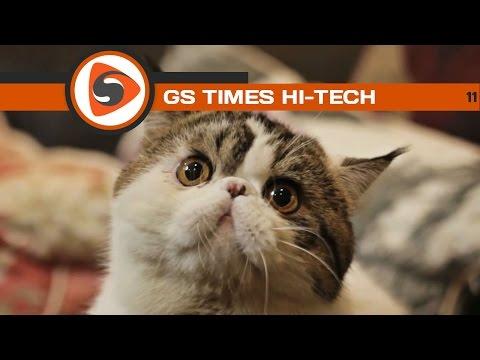 ГС Тимес [ХИ-ТЕКХ] 11. Почему котики такие милые