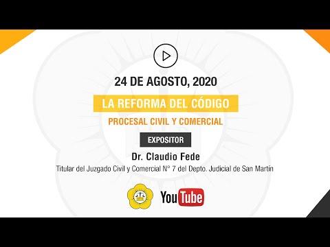 LA REFORMA DEL CÓDIGO PROCESAL CIVIL Y COMERCIAL - 24 de agosto 2020