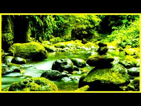Relaxar -Sono Profundo  -gua Corrente -Meditao -Musica Relajante Meditation sound - Dormir -sv127