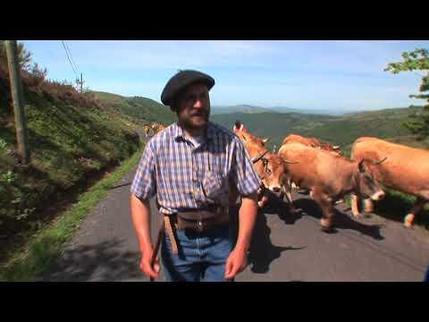 Vacada de Pèire Solinhac de La Garriga