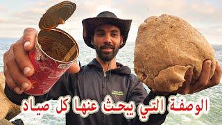 سردين معلب يساوي العجينة السحرية لصيد الكثير من الأسماك (وصفة رائعة ورخيصة) #Ajinsaydo