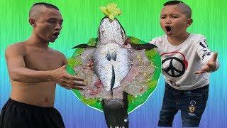 Cá Lóc Hóa Rồng Và Pha Bắt Cá Đẳng Cấp Thời Trẻ Trâu