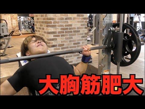 Download 胸筋ホモ - NatokHD.Net