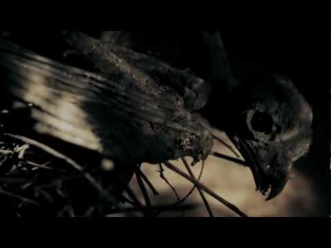 Whispers In The Shadow - The Rites of Passage (official promo video)