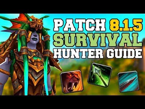 BFA - Survival Hunter   Full DPS Guide 8 0/8 1 [Basics PvE