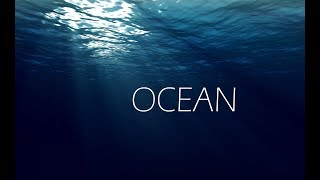 1 Hour of Ocean with Thomas Newman