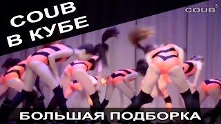 Большая подборка приколов COUB за февраль 2016. COUB В КУБЕ!
