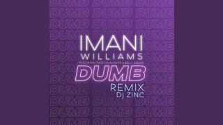 Dumb (DJ Zinc Remix)