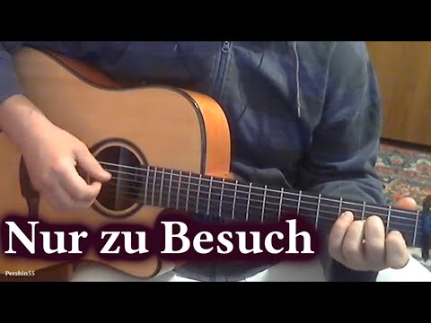 Nur zu Besuch - Die Toten Hosen / Fingerstyle (cover by iv_pershin)