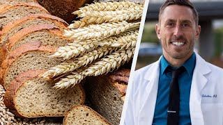 Paul Saladino MD On Why We Dont Need Fiber For A Healthy Microbiome
