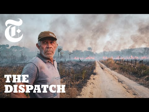 Meet the Ranchers Who Claim the Brazilian Amazon is Theirs to Burn   The Dispatch