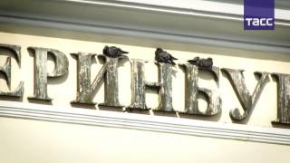 Музей истории Екатеринбурга открыл вакансию распугивателя голубей