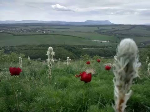 Крымские горы, Таш Джарган, Фонтаны
