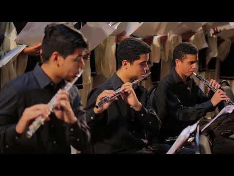 Música de Natal - Anoiteceu - Coleção Miau - смотреть онлайн