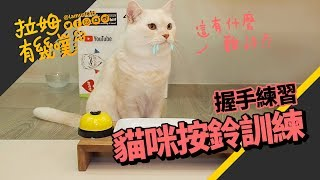 Training Cat to ring the service bell|LAMUNCATS ♧