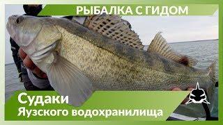 Рыбалка на яузском водохранилище в мае 2020