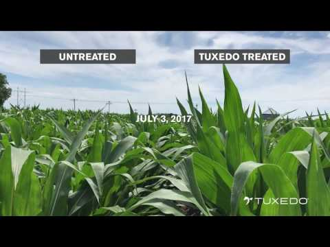 Verdesian Field Day – See the Difference Thanks to Tuxedo