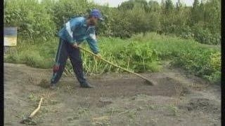 Посадка на даче и огороде видео