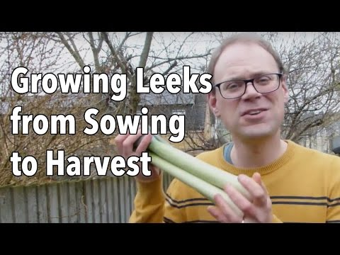 , title : 'Growing Leeks from Sowing to Harvest