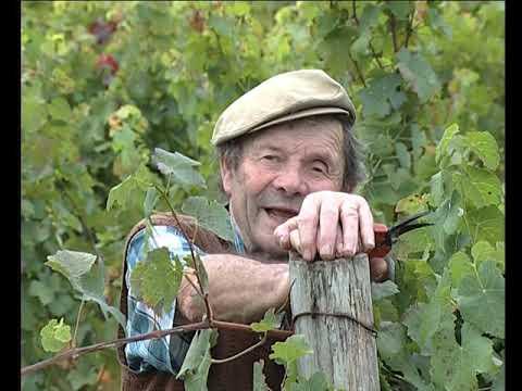 Lo lop e lo merchand de vin