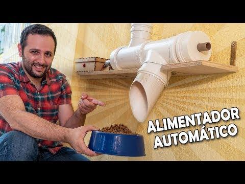 Faça um alimentador automático para cachorros #ManualMaker Aula 12, Vídeo 2