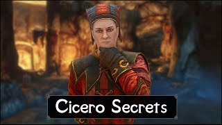 Skyrim: Top 5 Cicero Secrets You (Probably) Never Knew in The Elder Scrolls 5: Skyrim