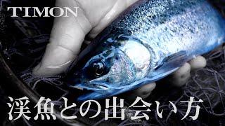【TIMON STREAM】渓流ルアーフィッシングの基本 / 下広太一