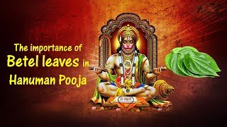 The Importance Of Betel Leaves In Hanuman Pooja | Devotional Stories In Telugu | Devotional Songs