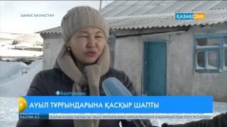 Шығыс Қазақстан облысындағы ауыл тұрғындарына қасқыр шапты