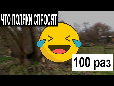 Жизнь в Польше. Какой вопрос вам зададут поляки 100 раз ЖИЗНЬ В ПОЛЬШЕ