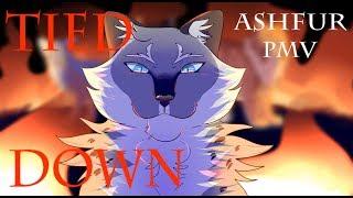 Tied Down - Ashfur PMV
