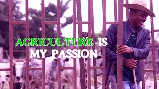 Dasmad Agro Global Field Nigeria Limited