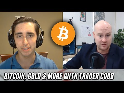 Analyzing Bitcoin & Gold (w/ Trader Cobb)