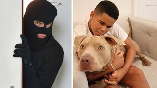 Man ABUSES DOG, Then Dog SAVES His Family   FamousTubeFamily