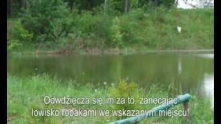 preview picture of video 'Kwiczoł karmi ryby'