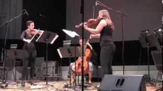 """Hotel Elefant in Concert -- '""""à cause du soleil"""" Flow Trio' by Richard Carrick"""
