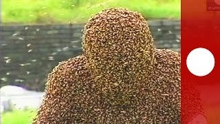 Видео: облепленный пчелами китаец просидел час неподвижно