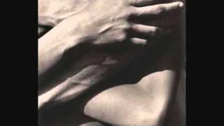Ray LaMontagne Shelter Music
