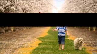 Bandh Khidki Hai Lyrics By - Rupaye Dus Karod   - YouTube