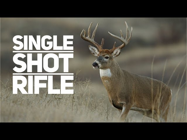 The Single Shot Rifle Review
