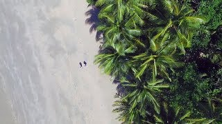 A bird's eye view of the spectacular Daintree region of Tropical North Queensland, Australia