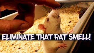 How to eliminate odors in your rodent room!
