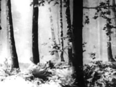 AA CHAL KE  TUJHE MAIN LEKE CHALOON-KISHORE, KISHORE AND KISHORE ! (DOOR GAGAN KI CHHAON MEIN (1964)