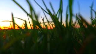 DJI Phantom 4 - Spring in Hessen, Germany - Corona brings us back to love for nature [HD 60 fps]