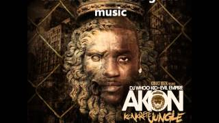 09 - Akon Call Da Police feat Busta Rhymes.wmv