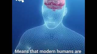 The human brain is shrinking