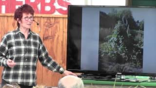 Creating A Living Garden Sculpture