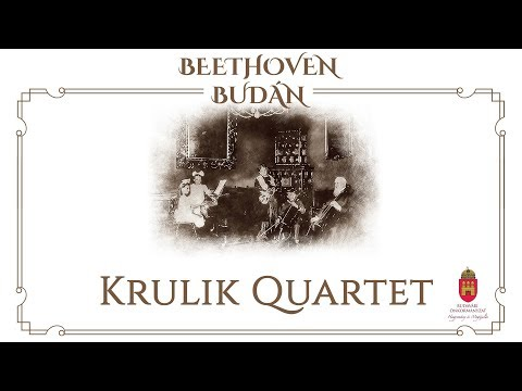 Házimuzsika - Krulik Quartet - video preview image